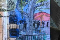 A tree on the esplanade at Disneyland